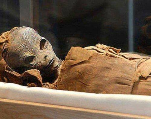 Alien Mummy Found In Egypt