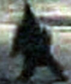 Video Captures Creepy Gnome Stalking Streets of Argentina Town