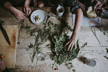 magical healing herbs